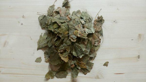 Ginkgoblätter